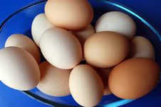 Free Chicken Eggs Stock Photo - 14676550