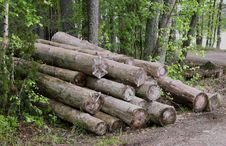 Free Logs Stock Photography - 14679412