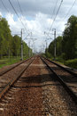 Free Railwayroad In The Forest Royalty Free Stock Photography - 14688937