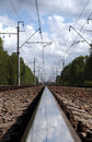 Free Railwayroad In The Forest Royalty Free Stock Image - 14688996