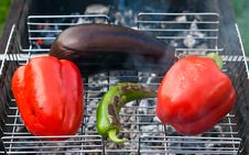 Free Baked Vegetables On A Grill Stock Photography - 14681312