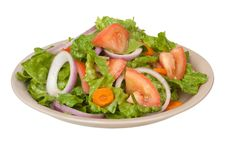 Free Tossed Salad Royalty Free Stock Images - 14682539