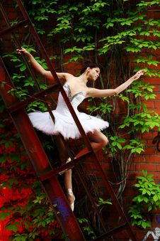 Free Beautiful Ballerina Dancing Ballet Dance Royalty Free Stock Image - 14684896