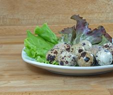 Free Boiled Quail Eggs Royalty Free Stock Photography - 14685237