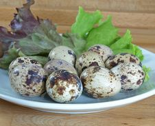 Boiled Quail Eggs With Lettuce Royalty Free Stock Photos