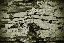Free Wood Texture Stock Photo - 14685490