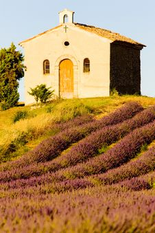 Free Provence Stock Image - 14687751