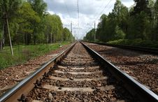 Free Railwayroad In The Forest Royalty Free Stock Photography - 14688967
