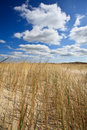 Free Sand Dunes Near To The Sea Royalty Free Stock Photography - 14691027