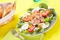 Free Salad Tuna Tomato Corn And Onion Stock Photography - 14695512