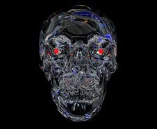 Free Crystal Skull Royalty Free Stock Photography - 14690377