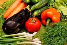 Appetizing Light Vegetables Stock Photography