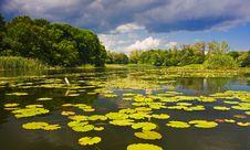 Free Landscape Stock Photo - 14693030
