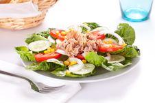 Salad Tuna Tomato Corn And Onion Royalty Free Stock Photo