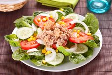 Free Salad Tuna Tomato Corn And Onion Stock Images - 14695524