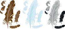 Free Stylized Feathers Stock Photos - 14696673