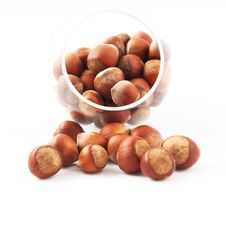 Free Nuts Stock Images - 14699004