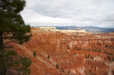 Free Amphitheater - Bryce Canyon Royalty Free Stock Photography - 1470027