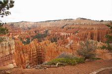Free Amphitheater - Bryce Canyon Royalty Free Stock Images - 1470049
