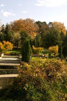 Free Trees In Autumn Stock Photos - 1476743