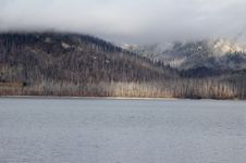 Free Jackson Lake - Grand Teton National Park Royalty Free Stock Images - 1476989