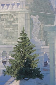 Fir-tree And Ice Sculpture Royalty Free Stock Photography