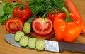 Free Appetizing Light Vegetables Snack Stock Photo - 14707200