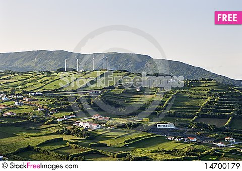 Hedge landscape of Faial, Azores Stock Photo