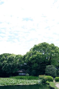 Japanese Landscape Garden Royalty Free Stock Images