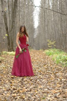 Free Female With Rose In The Forest Stock Photography - 14703082
