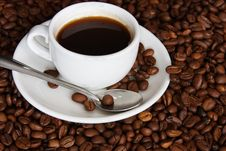 Free Cup Of Coffee Stock Image - 14705241