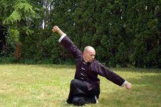 Free Shaolin Kung Fu Block Royalty Free Stock Photo - 14708805