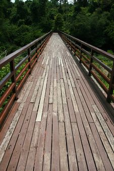 Free Wooden Plank Board Walk Stock Photos - 14709883