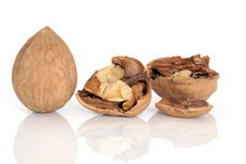 Free Walnuts Royalty Free Stock Image - 14709916