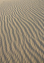 Free Ripples On A Sand Dune. Stock Photo - 14710900