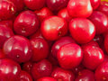 Free Ripe Cherries Stock Photography - 14713182