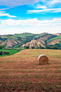 Free Bales Of Hay Royalty Free Stock Photography - 14713377