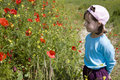 Free Little Girl In The Red Poppy Stock Photo - 14719410