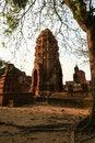Free Thai Pagoda Royalty Free Stock Photo - 14719775