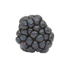 Blackberry Stock Images