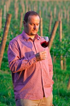 Young Man Enjoying Red Wine Royalty Free Stock Images