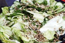 Free Spring Salad Stock Images - 14710594