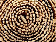 Wooden Roll Stock Photography