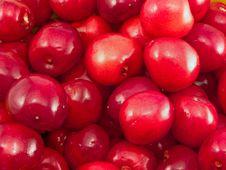 Free Ripe Cherries Stock Photography - 14713182