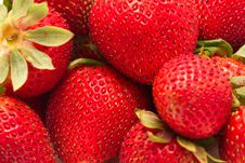 Free Closed Up Shot Of Ripe Strawberries Stock Photography - 14715052