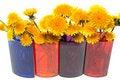 Free Yellow Dandelions Stock Image - 14721711
