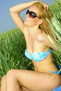 Free Sexy Girl In A Wheat Field Stock Images - 14725204