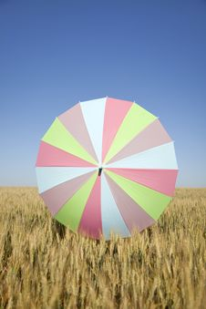 Free Umbrella At Wheat Field Royalty Free Stock Image - 14720086