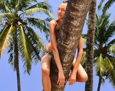 Free Woman Resting On A Palm Tree Royalty Free Stock Photo - 14720585