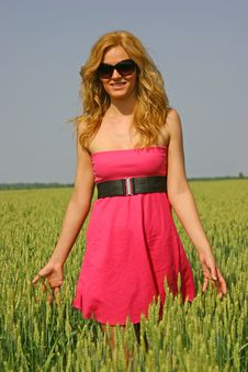 Free Sexy Girl In A Wheat Field Royalty Free Stock Image - 14725146